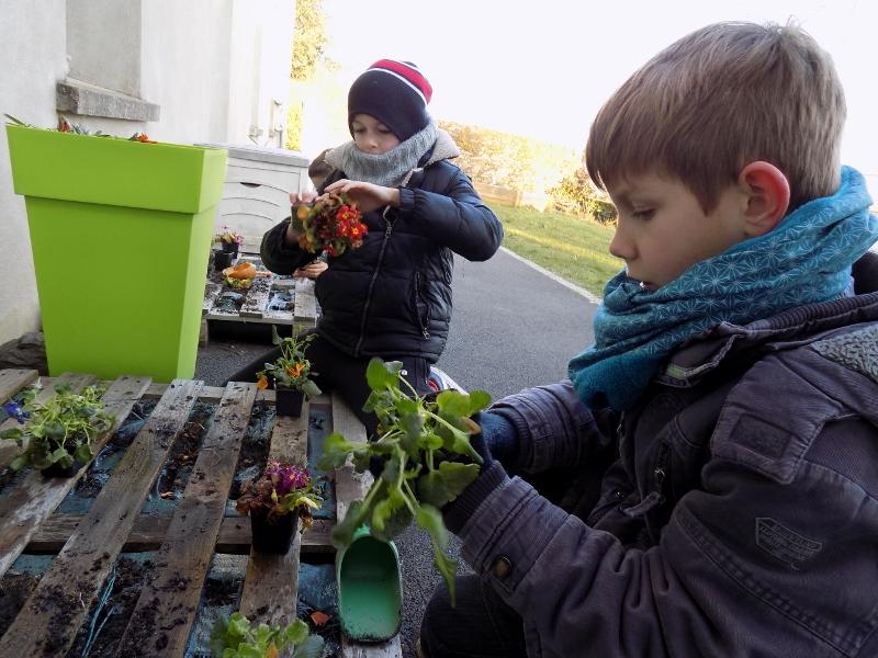 jardinage-2_0